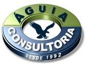 Águia Consultoria Consultoria Hoteleira Profissional Especializada